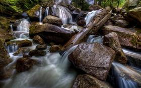 Обои природа, лес, река, вода, камни