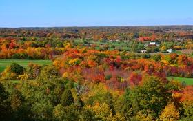 Картинка деревья, осень, небо, дома, поля