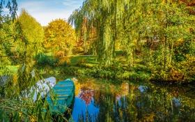 Обои осень, деревья, пруд, парк, камыши, лодки, аллея