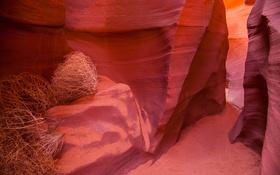 Обои краски, Аризона, ущелье, США, каньон антилопы