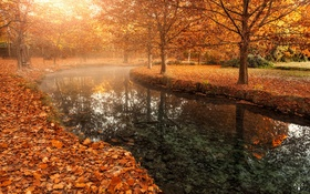 Обои город, осень, парк, река