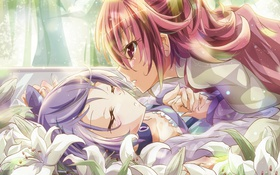 Картинка арт, девушки, аниме, precure, цветы