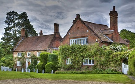 Обои столбики, Англия, Heydon, кусты, деревья, зелень, трава
