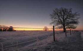 Картинка зима, поле, закат, забор