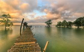 Картинка деревья, озеро, причал, хижина, мостик