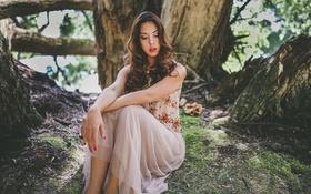Картинка лес, глаза, девушка, корни, дерево, волосы, платье