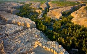 Обои долина, река, деревья, плато, Синьцзян, Китай