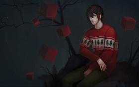 Картинка Парень, свитер, разные глаза, гетерохромия, красные кубы