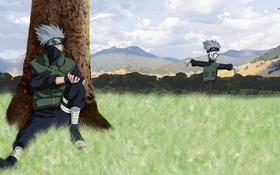 Обои трава, горы, дерево, naruto shippuden, kakashi hatake, чучел