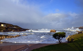 Обои море, волны, небо, шторм, дерево, скалы, бухта