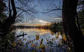 Обои природа, озеро, утро