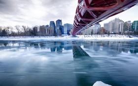 Обои река, Канада, дома, Калгари, зима, мост