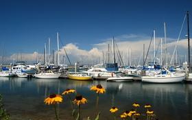 Картинка бухта, небо, гавань, лодки, яхты, цветы