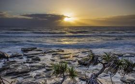 Обои море, фотограф, берег