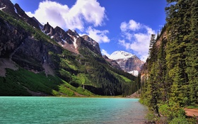 Обои лес, деревья, горы, озеро, скалы, берег, тропа