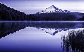 Картинка лес, природа, озеро, гора, Oregon, Trillium Lake