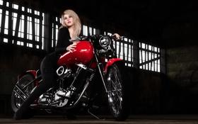 Картинка девушка, гараж, блондинка, мотоцикл, байк, harley davidson, elena