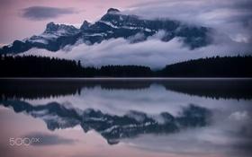 Обои отражения, лес, горы, вода