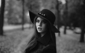 Картинка портрет, шляпка, Melancholia, David Olkarny