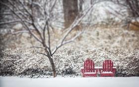 Обои зима, снег, дерево, стулья, боке