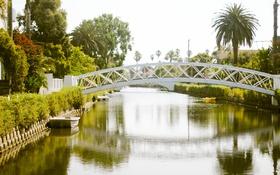 Обои пальма, зелень, вода, отражение, мост, лодка, канал
