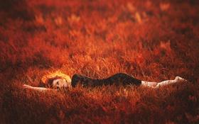 Картинка трава, веснушки, красная, рыжеволосая