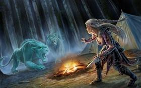 Обои лес, девушка, кошки, ночь, хищники, тату, костер