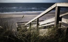 Обои море, пляж, лестница