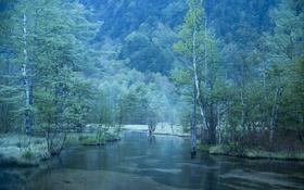 Обои деревья, горы, река, дымка