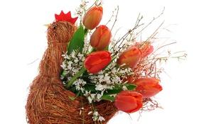 Картинка цветы, букет, тюльпаны