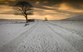 Картинка поле, снег, вечер