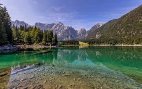 Обои лес, небо, облака, деревья, горы, озеро