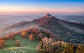 Картинка лес, замок, долина, холм, германия