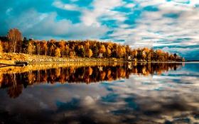 Обои лес, осень, небо, облака, дом, озеро