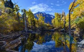 Картинка Eastern Sierra, Reflections, Convict Lake, Fall Colors