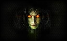 Обои Sarah, Blizzard, StarCraft II, StarCraft 2, Heart of The Swarm, Sarah Kerrigan, Background