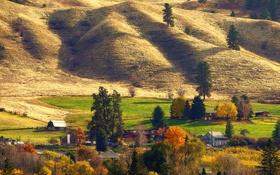 Картинка склон, дома, деревья, осень, поле