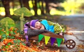 Обои фон, сон, младенец