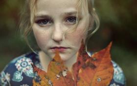 Обои осень, настроение, девочка