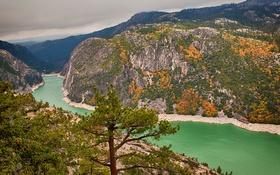 Обои природа, деревья, река, горы, осень