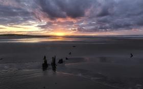 Обои beach, ocean, sunset, cloud, sun, sand