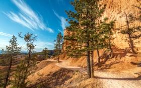 Обои небо, солнце, деревья, скалы, тропинка, Utah, Bryce Canyon National Park