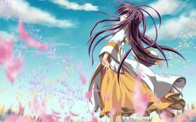 Картинка ветер, noiji guren 0220, jun, арт, девушка, лепестки, цветы