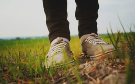 Картинка трава, кеды, шнурки