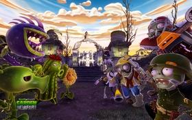 Картинка Weapons, Characters, Plants Vs. Zombies, WarFare