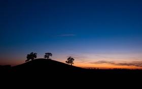 Картинка небо, деревья, закат, силуэт, холм