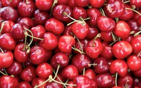 Картинка фрукты, черешня, лето