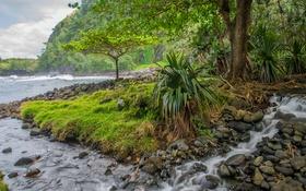 Обои деревья, горы, река, ручей, камни, поток