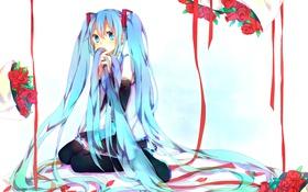 Картинка девушка, цветы, ленты, розы, vocaloid, hatsune miku, сидя