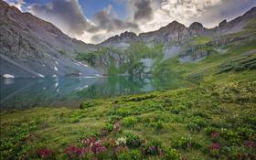 Картинка природа, горы, отражение, озеро, цветы
